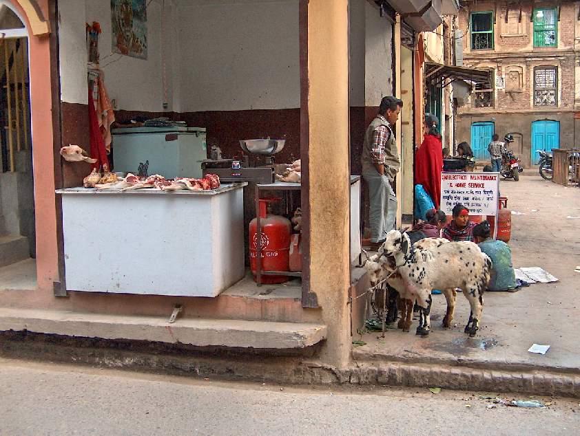 00983-nepal-slager.jpg