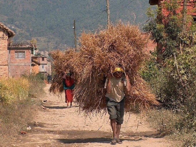 01016-nepal-omgeving-phutung.jpg