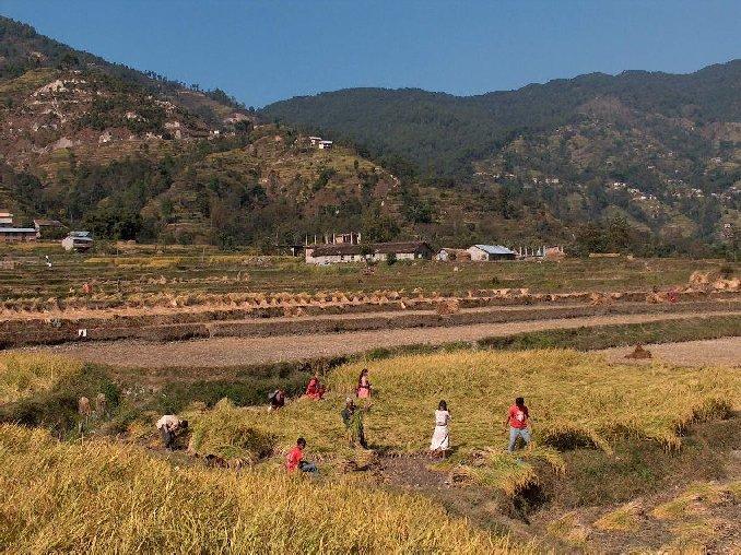 01038-nepal-omgeving-phutung.jpg